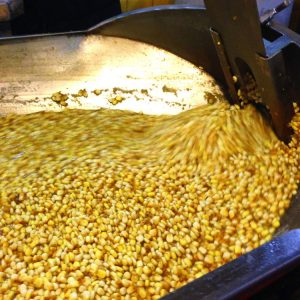 corn nixtamal cleaning