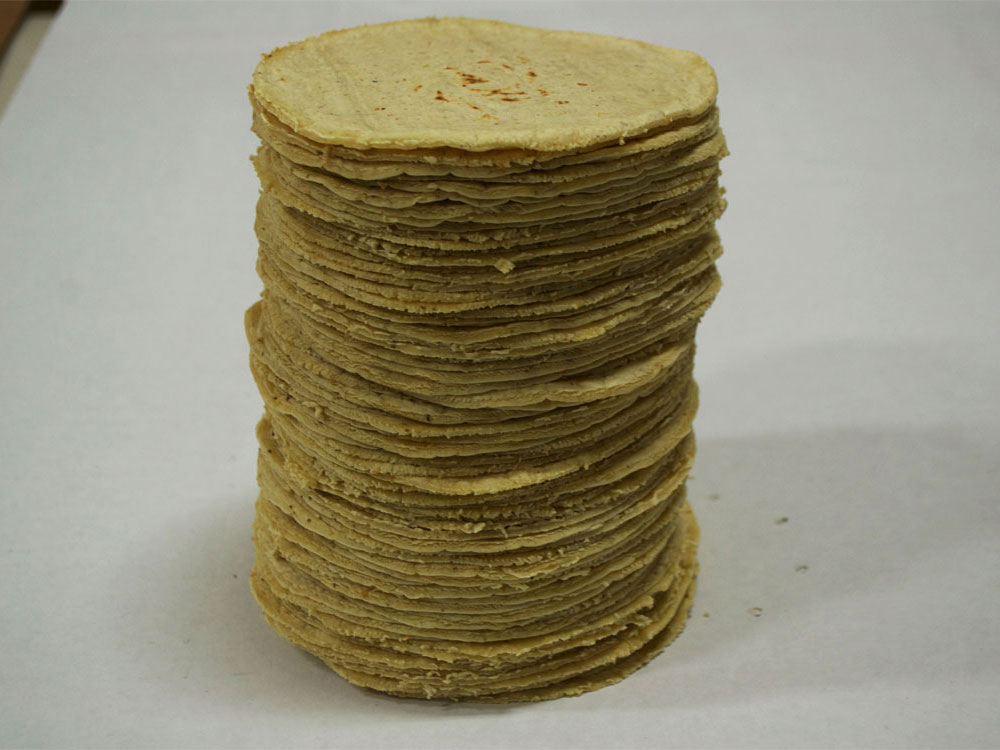 tortillas ready corn tortillas production-8